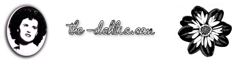 Welcome to The Dahlia.com Home to Misstery Date Pin Up Art